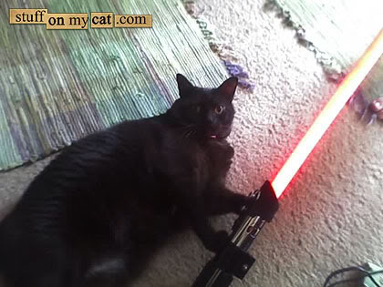 darthkitty