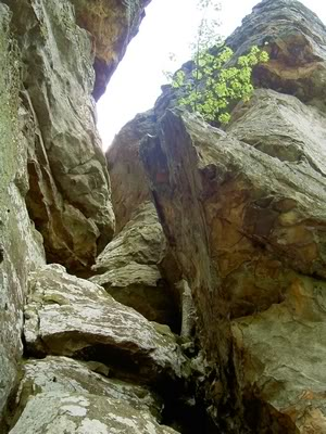 5-cleft-of-rock
