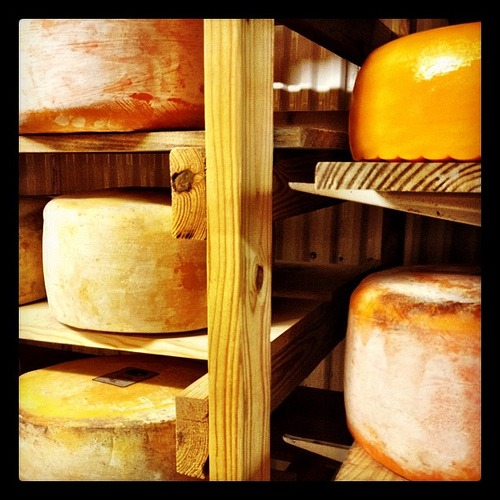 Cheese cooler at Sand Creek Farm #texas #country #organic #dairy