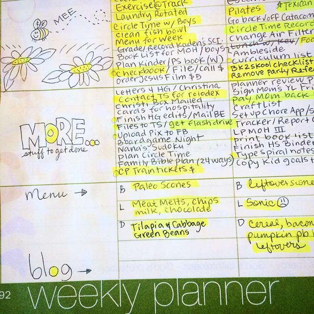 I'm a Homeschool Planner Rebel!