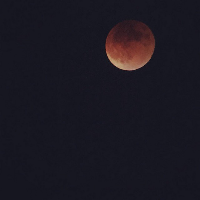 Blood Moon in Austin Texas