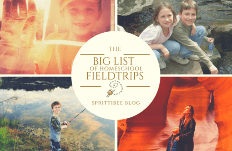 BIG LIST of HOMESCHOOL FIELD TRIPS