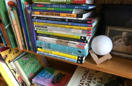 homeschool stem books @sprittibee