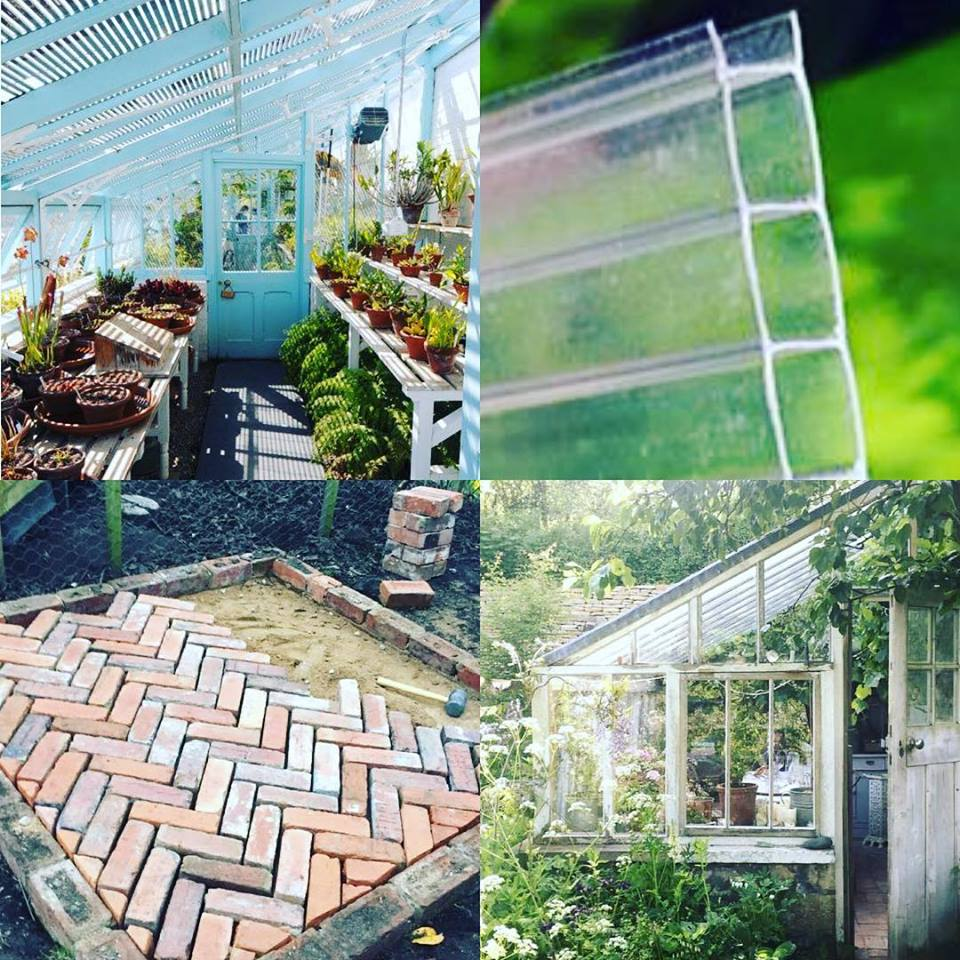 greenhouse dreams