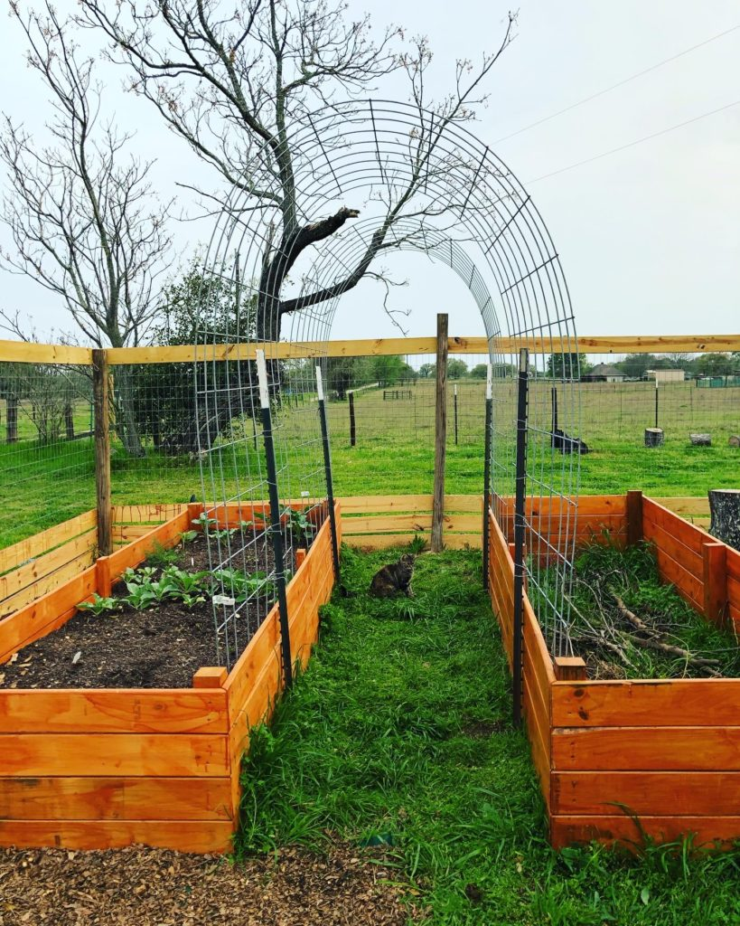 Raised Garden Beds @sprittibee
